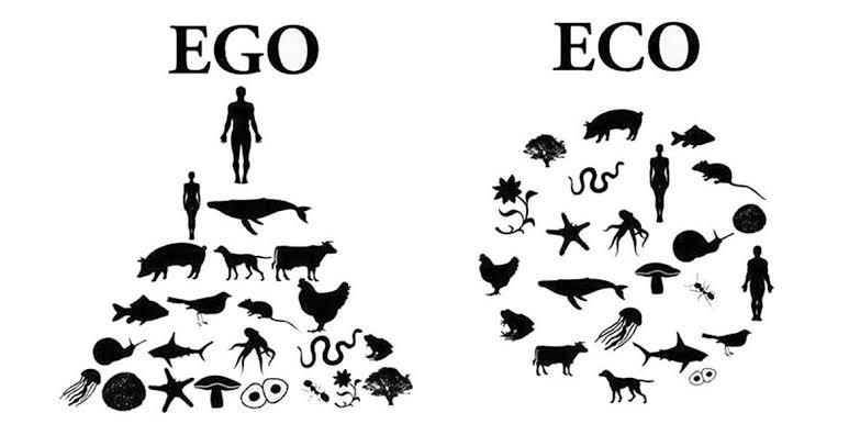Igualitarismo Bioesférico
