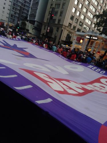 Manifestação de 29 de maio em São Paulo: retratos