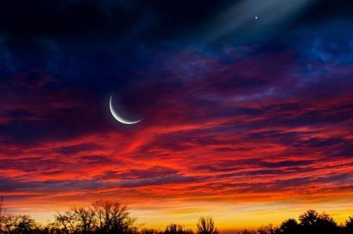 Solitário Amor Lunar
