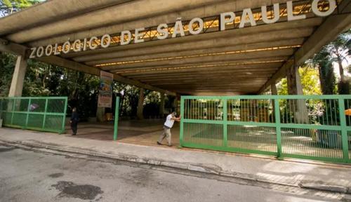 E OS PARQUES DE SÃO PAULO VOLTARAM A ABRIR....