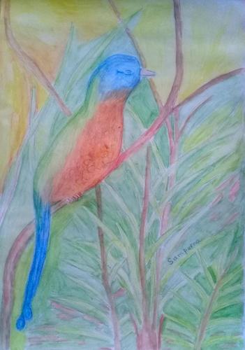 Udú: O pássaro mágico da Amazônia